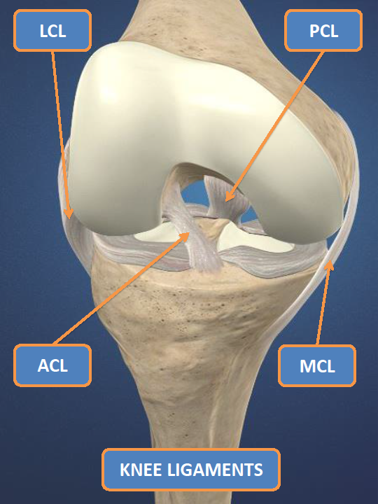 The ACL Epidemic in Sports, Part 2: Who's at Risk?